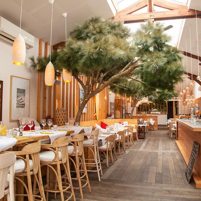 Les Pin Du Moulleau Restaurant Au Cœur D Arcachon Tendance Bassin