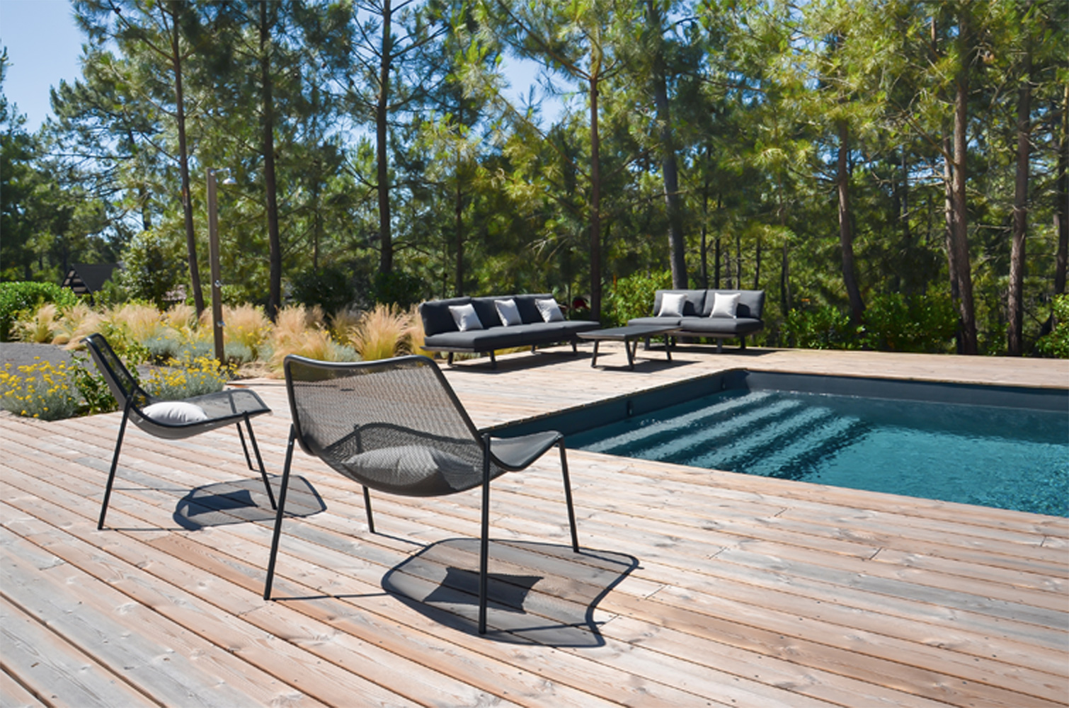 buxus-outdoor-image-avant-pins